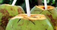 1. Penjelasan air kelapa bagus ketahanan saat berhubungan seks