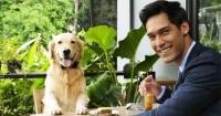 2. Bersahabat menyukai hewan