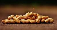 3. Kacang tanah memiliki kandungan zat besi tinggi