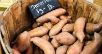 Apa saja risiko karena terlalu banyak mengonsumsi ubi saat hamil