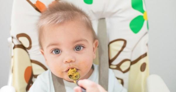 5 Makanan Tinggi Kalori Yang Baik Untuk Bayi Popmama Com