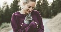 Cara Aman Memelihara Kucing Rumah bagi Ibu Hamil