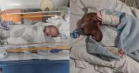 Mencium Bayi Baru Lahir Sangat Berbahaya Bahkan Bisa Mematikan
