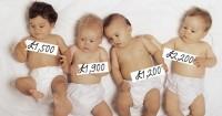2. Penjualan bayi