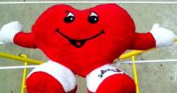 3. Kardiovaskular