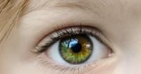 6. Mencegah mata rabun