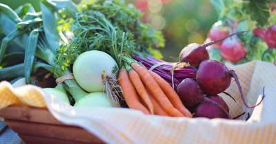 6 Rekomendasi Olahan untuk si Kecil yang Susah Makan Sayur