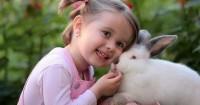 5. Biarkan kelinci bermain luar kandang, namun tetap dalam pengawasan