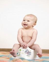 Bersiap Pelatihan Toilet (Potty Training)