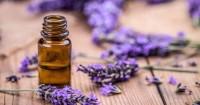 1. Minyak lavender
