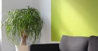2. Ruang tamu warna modern