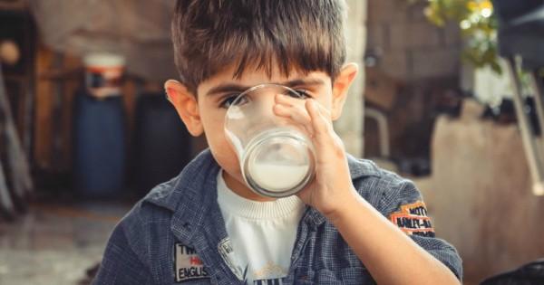 10 Rekomendasi Susu Formula Bagi Anak Usia Dua Tahun Popmama Com