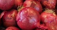 9. Bawang merah dijadikan obat oleh tabib Mesir kuno