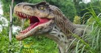 4. Petualangan Dinosaurus, Taman Legenda