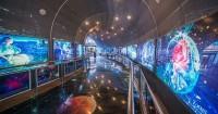 2. Planetarium Jakarta