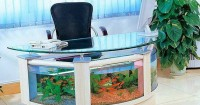 5. Akuarium meja kerja
