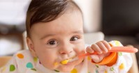 1. Aturan WHO terkait pemberian makanan padat bayi