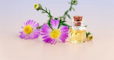 Ingin Beli Parfum Wangi Alami Coba 5 Jenis Aroma Natural