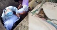 Sadis Bayi 11 Bulan Tewas Diperkosa Disodomi Suami Pengasuhnya