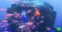 1. Finding Nemo