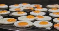 4. Telur