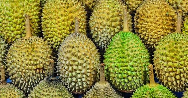 Makan Durian Saat Hamil Tua Seperti Apa Aturan Amannya Popmama Com