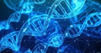 Ilmuwan China Berhasil Mengedit DNA Janin Jadi Bayi Anti-AIDS