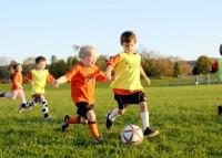 6. Cooperative play (permainan kooperatif)