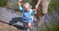 3 Alat Bantu Efektif Membantu Bayi Belajar Jalan