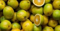 5. Vitamin C