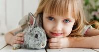 5 Tips Mengatasi Rasa Takut Anak Hewan