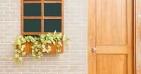 Perhatikan 5 Cara Tepat Menanam Tanaman Rambat Rumah
