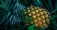 8. Jus nanas sebagai scrub penghilang tahi lalat