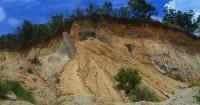 2. Menyingkirlah dari jalur tanah longsor secepat mungkin