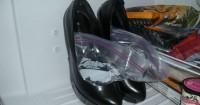 1. Isi sepatu air masukkan dalam freezer