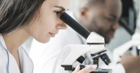 2. Peneliti mengumpulkan air mani