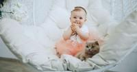 Studi Pu Hewan Peliharaan Tingkatkan Kesehatan Pencernaan Bayi
