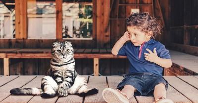 Ma, Ini Cara Kenalkan Kasih Sayang Binatang Anak