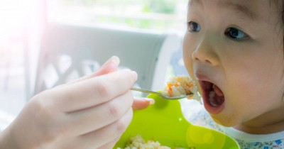 4 Sumber Lemak Penting dalam MPASI Bayi