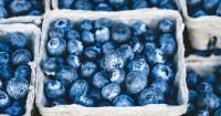 Kandungan Buah Blueberry