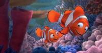 6. Finding Nemo