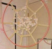 4. Sarang laba-laba