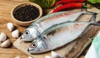 Kandungan Nutrisi Ikan Kembung