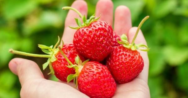 7 Manfaat Stroberi untuk Kecantikan | Popmama.com