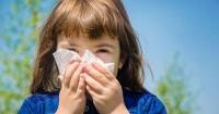 6 Cara Mendeteksi Mengatasi Rhinitis Alergi