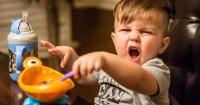 5 Hal Harus Disiapkan agar Anak Lancar Belajar Makan