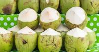 8. Air kelapa hijau