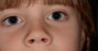 1. Olahraga mata