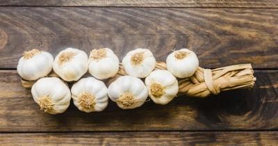 Mudah Lebih Hemat Ini 5 Cara Menanam Bawang Putih Rumah