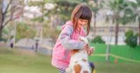 Hih Anak Kejam Terhadap Hewan, Bisa Jadi Kena Gangguan Mental